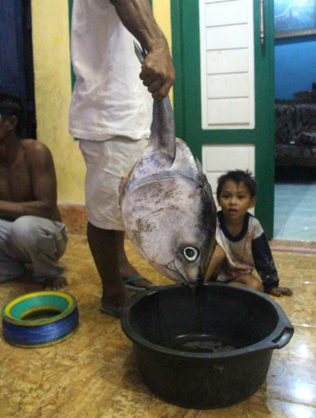 A man holds up the head of a tuna, caught earlier, in the Bajau community of Mola in Wakatobi. Photo by Melati Kaye
