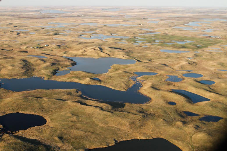 Aerial view of the Prairie Pothole Region, a huge swathe of grassland and shallow lakes that extends north and west from Iowa into Canada. USDA grants funded a project in North Dakota paying landowners not to develop their land as a way to preserve habitat and keep carbon locked away in the soil. To offset its greenhouse gas emissions, automaker Chevrolet bought tens of thousands of carbon credits from the project as part of a fledgling market for grassland carbon credits. Photo courtesy of USDA Natural Resources Conservation Service.