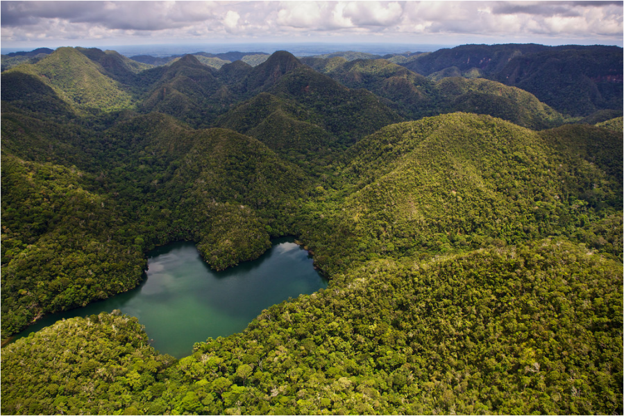 The isolated Sierra del Divisor Mountain Range is home to a range of attitudinal gradient and micro-climates that foster high levels of biodiversity. Photo courtesy of CEDIA.