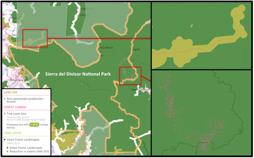 Global Forest Watch shows an uptick of deforestation activities in Sierra del Divisor, including a logging road inching towards the park (upper right inset) and around 1,000 hectares of tree cover loss in an area along the park's border with Brazil (lower-right inset).