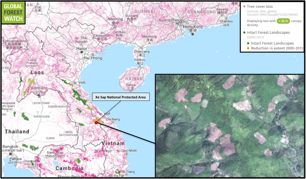 Global Forest Watch data show Laos lost 1.6 million hectares -- more than 8 percent -- of its tree cover from 2001 through 2014. Even protected areas have been affected, with Xe Sap National Protected Area losing 1,400 hectares in that same period. Large areas of cleared forest in the southern extent of the reserve are visible from satellite imagery.