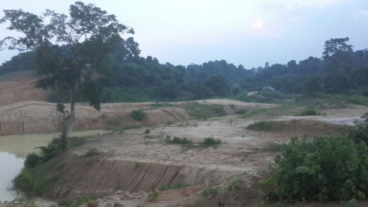 Numaligarh Refinery Limited has cleared five hectares of forested land in No Development Zone for the development of a golf course. Photo courtesy of Rohit Choudhury.