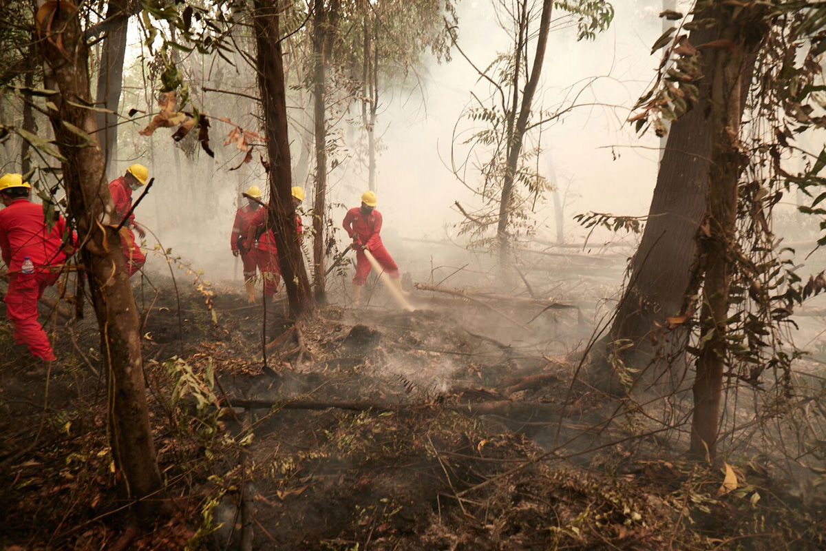 APP fire-fighting crew in action.