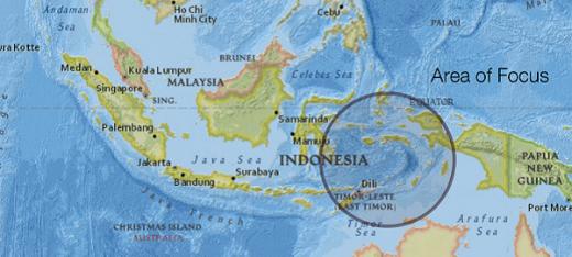 The Moluccas