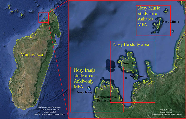 Map shows the study sites off the Madagascar coast where researchers made the first-ever field observations of Omura's whales. Map reproduced from Cerchio et al. 2015.