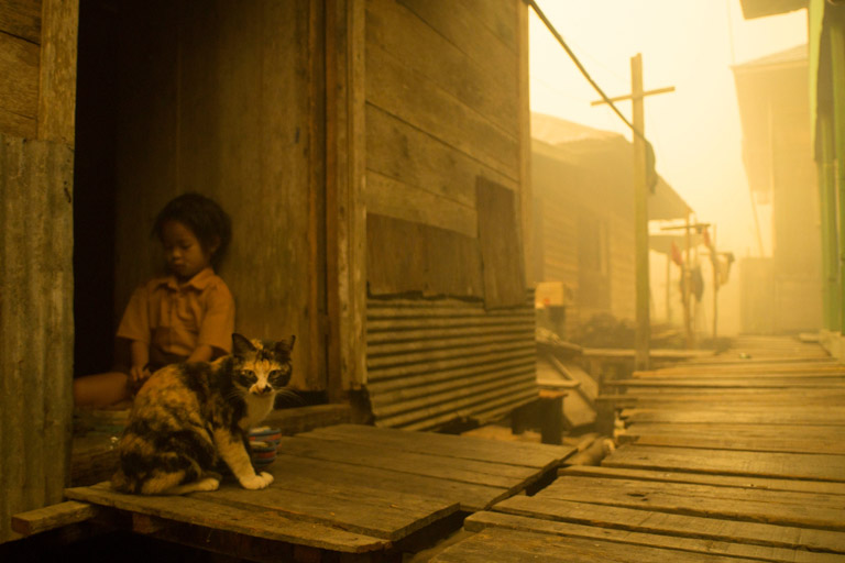 Child and cat seen at Sei Ahass village, where the air is engulfed with thick haze from the forest fires. Kapuas district in Central Kalimantan province on Borneo island, Indonesia.  These fires are a threat to the health of millions. Smoke from landscape fires kills an estimated 110,000 people every year across Southeast Asia, mostly as a result of heart and lung problems, and weakening newborn babies.