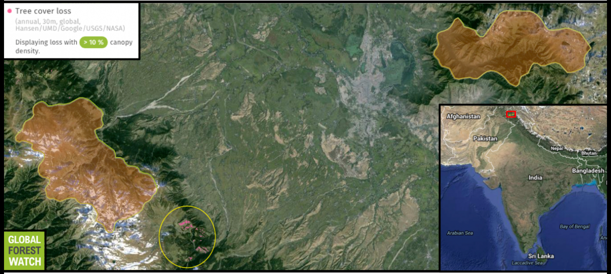 Dachigam National Park consists of two protected areas (highlighted in orange) on either side of a heavily populated valley  in extreme northern India. Satellite imagery indicates much of the valley's land has already been transformed, and data from the forest monitoring platform Global Forest Watch show recent deforestation (yellow circle) near the park's lower unit amounting to about 140 hectares of tree cover loss from 2001 through 2014.
