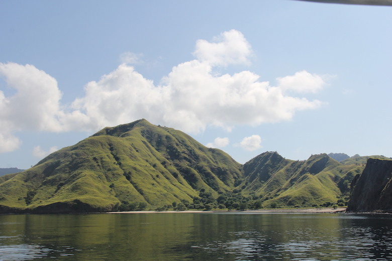 The mountains of remote and wild Komodo Island.  Photo by Jeremy Hance.