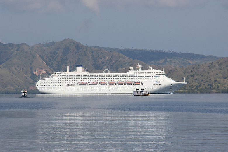 A giant cruise ship visits Komodo Island. Tourism is thriving in the region due largely to the dragons. Photo by Jeremy Hance.