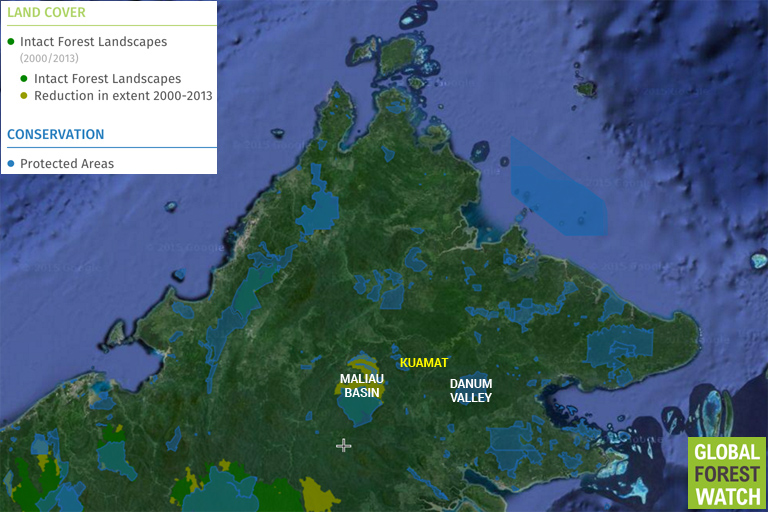 Global Forest Watch map of Sabah showing the location of Danum Valley, Kuamat, and Maliau Basin.