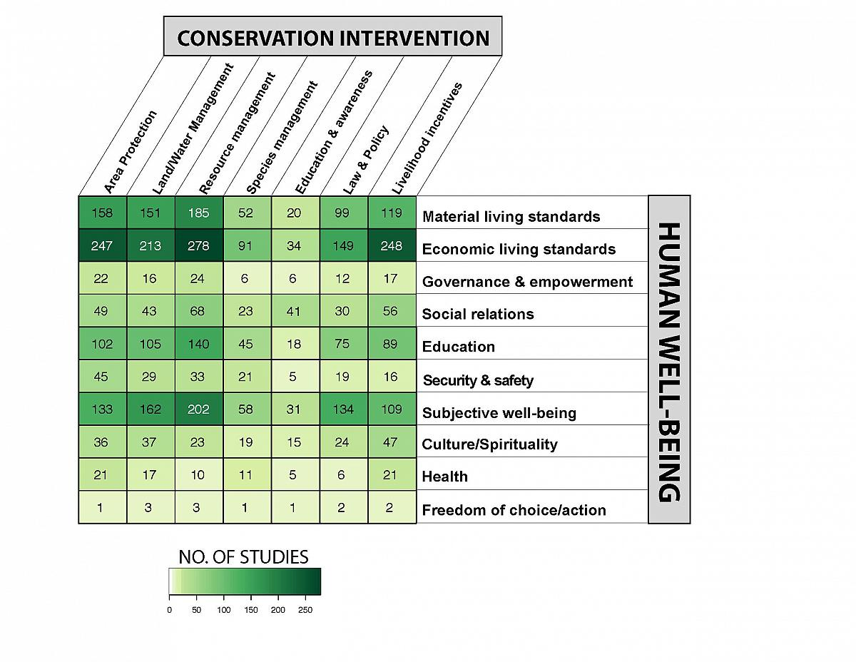 empirical evidence for the nature of J holist nurs 2000 mar18(1):46-62 empirical evidence for the nature of holistic  comfort kolcaba k(1), steiner r author information: (1)department of statistics, .