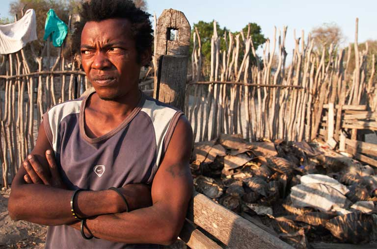 A poacher in Beloha stands in front of his pig pen where the remains of hundreds of adult Radiated Tortoises were found. Photo courtesy of TSA