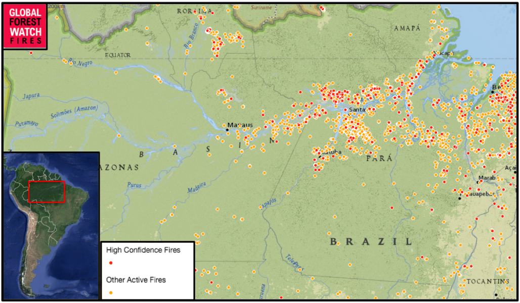 Satellite data from Global Forest Watch Fires show a total of 2,031 fires in the region shown in just the past week (Dec. 7-14). Most of these occurred along the banks of the Amazon River near Santarém, typified by lush rainforest not used to burning.