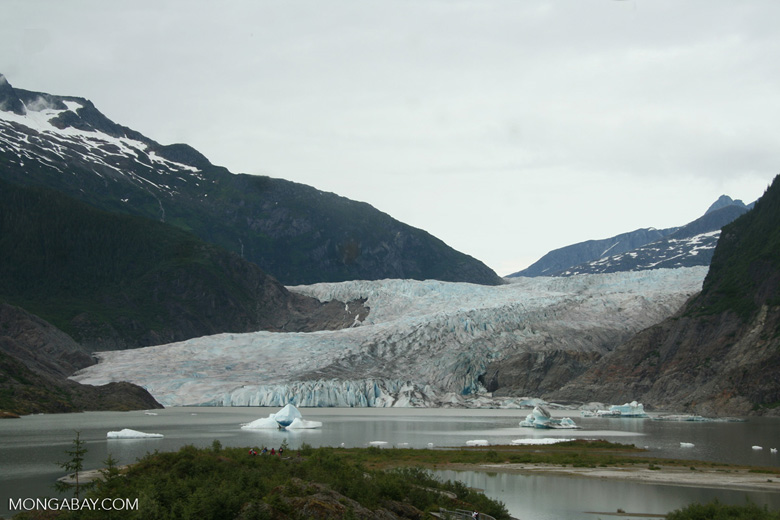Base of Mendenhall glacier in Alaska's Inside Passage, Alaska United States. Photo by Rhett Butler.