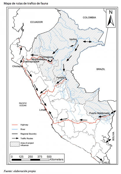 A wildlife trade map created by Noga Shanee, Sam Shanee and Patricia Mendoza for their forthcoming publication on primate trafficking routes in Peru. Note sources for wild primates in eastern Peru and markets primarily on the coast. There are many different river and road routes along which animals can be transported unhindered to the coast and across the border to Ecuador and Bolivia, as well as to ports for transit to international destinations. Image courtesy of Noga and Sam Shanee and Patricia Mendoza