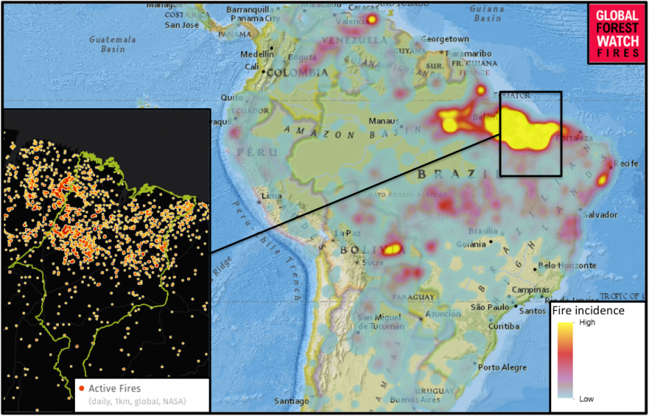 Fire data from Global Forest Watch indicate 2015 may not be a good year for Maranhão's forests, either. Of the 9,500 fires recorded in Brazil in the past week (Dec. 1 to Dec. 8), 3,200 – more than 30 percent – occurred in the coastal state alone.
