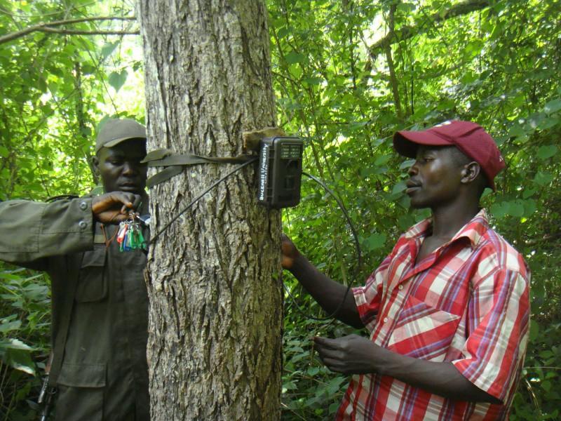 Wildlife Ranger an Community Wildlife Ambassador setting camera-traps in South Sudan. Photo courtesy of FFI and Bucknell University.