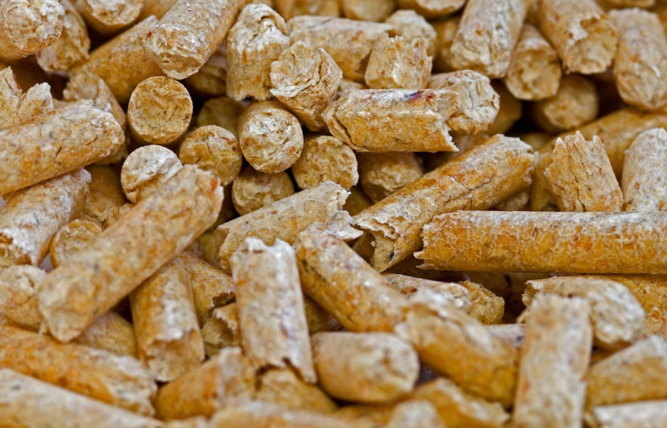 """Wood pellets in a production center in Germany. Wood pellets are made from compressed organic matter collectively called """"biomass."""" While they can be made from logging and milling leftovers, industry critics warn whole trees are often used in their production.  Image courtesy of Greenpeace."""