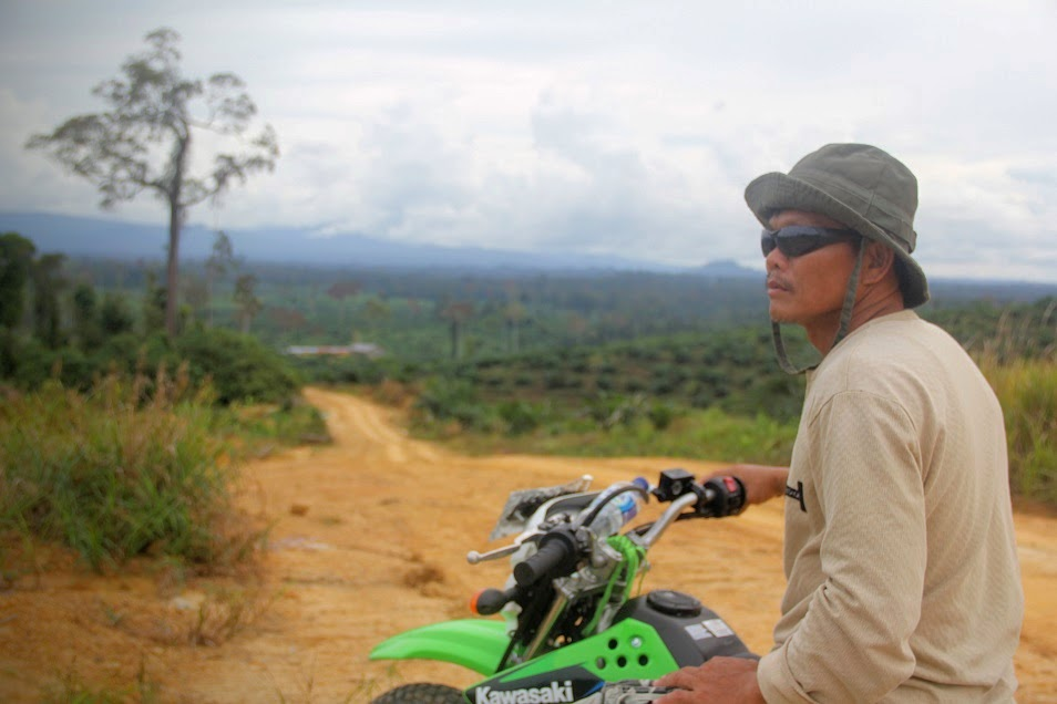 Lawing Uning, the chief of Long Hubung Ulu village in Borneo's Mahakam River basin, surveys land that has been planted with oil palm against his community's wishes. A dispute over the area between neighboring villages erupted when an oil palm company was granted a concession there by the regional government. Photo by Philip Jacobson