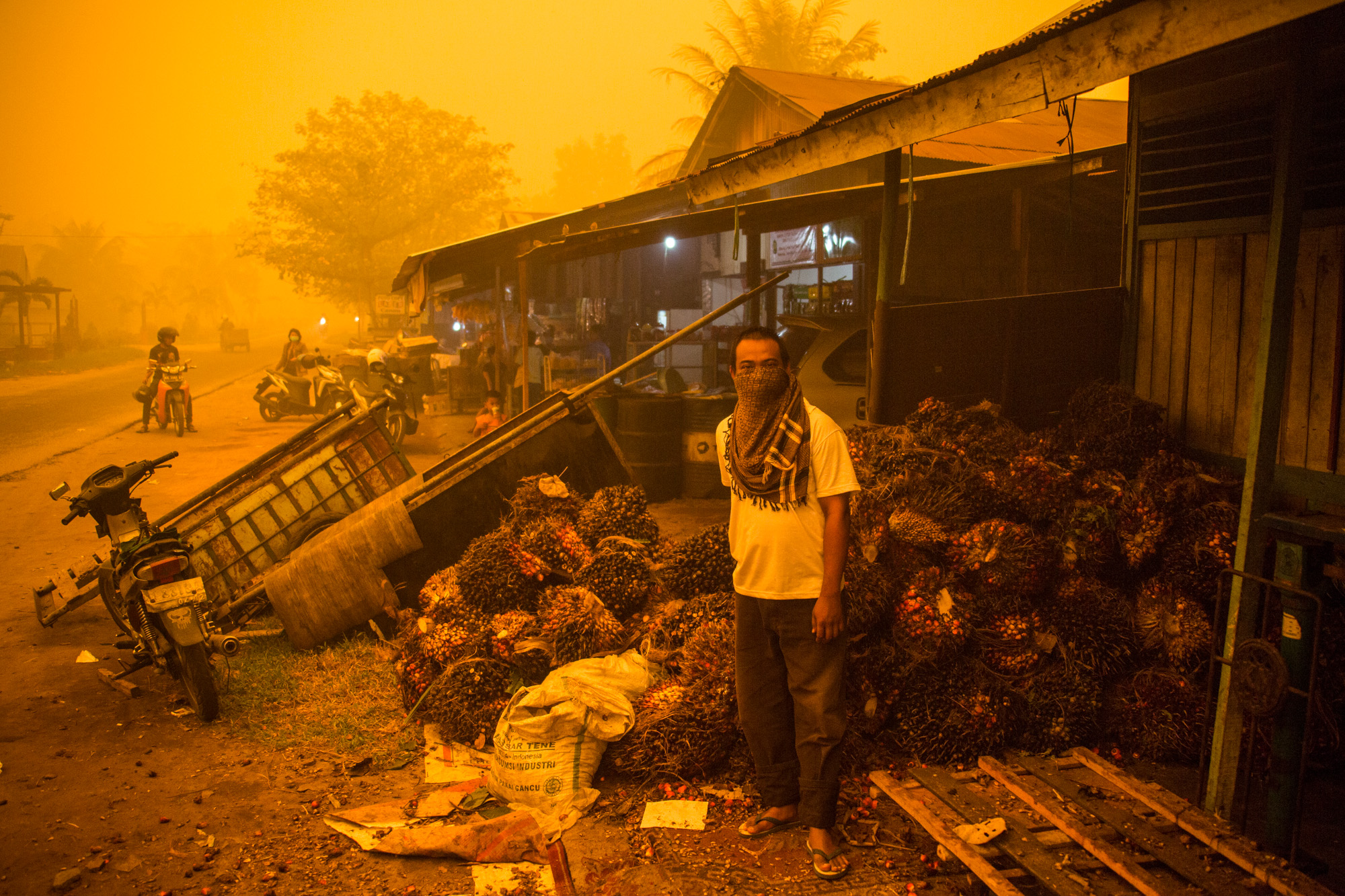 A man stands before a pile of oil palm fresh fruit bunches at the height of last year's fire and haze crisis in the Central Kalimantan capital of Palangkaraya, one of the hardest hit by the disaster. The orange color is real. Photo by Bjorn Vaughn
