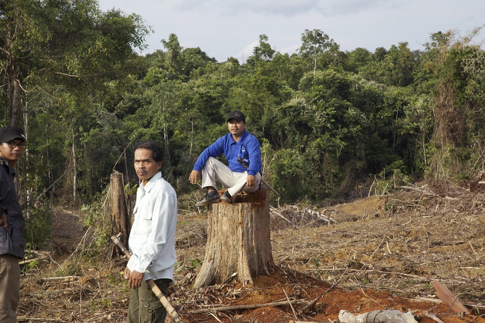 Masrani, sitting, and his father, Petrus Asuy, stand in an area of what they say is their village of Muara Tae that was cleared by predatory oil palm companies. Photo courtesy of Tomasz Johnson