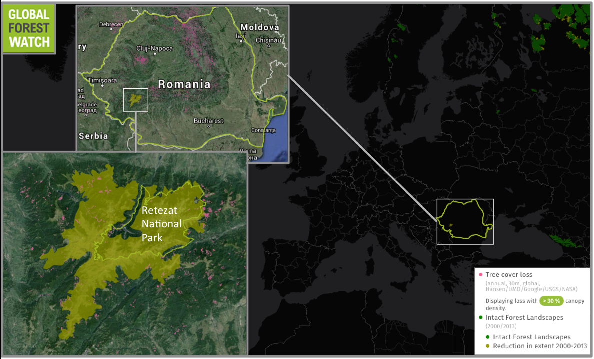 Global Forest Watch shows Romania lost around 258,500 hectares of tree cover from 2001 through 2014.  The country contains the only Intact Forest Landscape (IFL) in all of Europe, but it has been degraded. Since 2000, the IFL has lost around 800 hectares of forest. Of that, 150 hectares were lost from Retezat National Park.