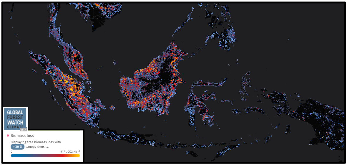 Biomass loss in Indonesia from 2001 through 2013. Sumatra appears to have the highest levels (orange).