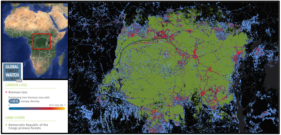 The Democratic Republic of Congo (DRC) still has a vast swath of primary forest. However, spindles of deforestation-related biomass loss radiate from within it (2001 through 2013).