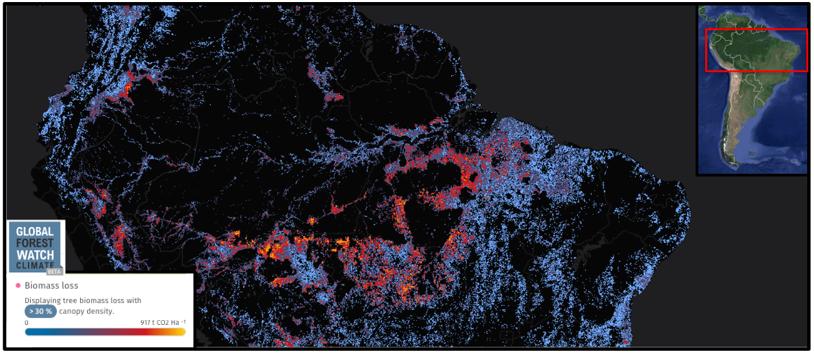 Biomass loss in Brazil from 2001 through 2013 is focussed at the peripheries of the Amazon Basin.