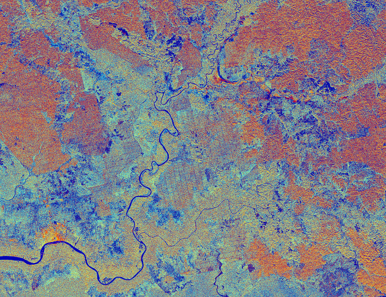 The port town of Sampit (bright orange in lower left), the Sampit River, and surrounding oil palm plantations and peat swamp in Indonesia's Central Kalimantan province. A European Space Agency satellite captured the image on March 22. Image courtesy of Copernicus data (2015)/ESA.