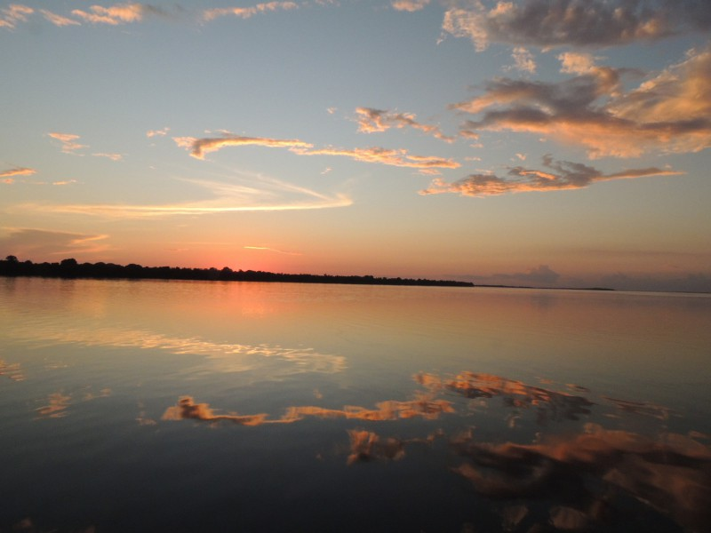 The Unini River is a river of Amazonas state in north-western Brazil. Photo courtesy of FVA.