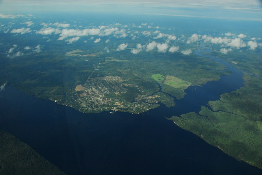 Aerial view of Novo Airão county, in Negro River, where the Brazilian NGO FVA has been working since 1996. Photo courtesy of FVA.
