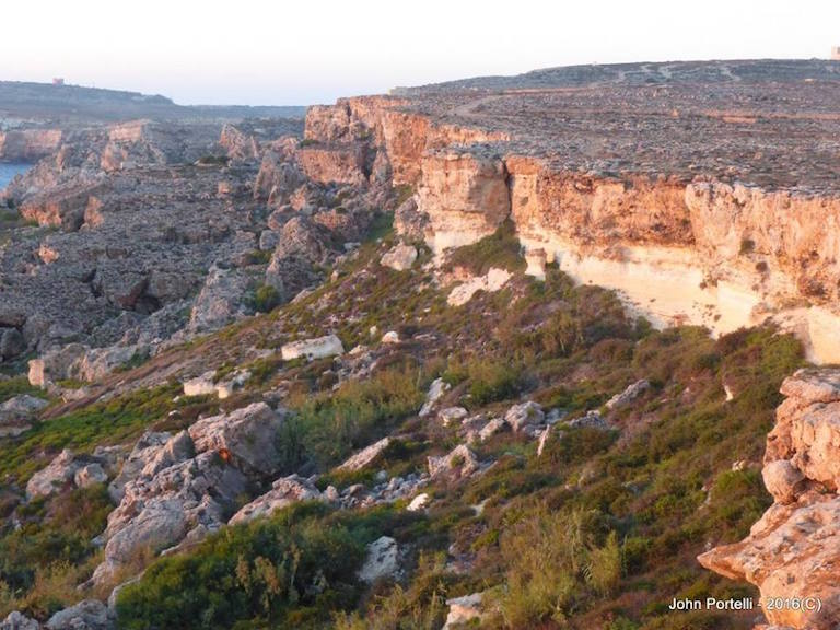 A Maltese garrigue habitat. Photo by John Portelli.