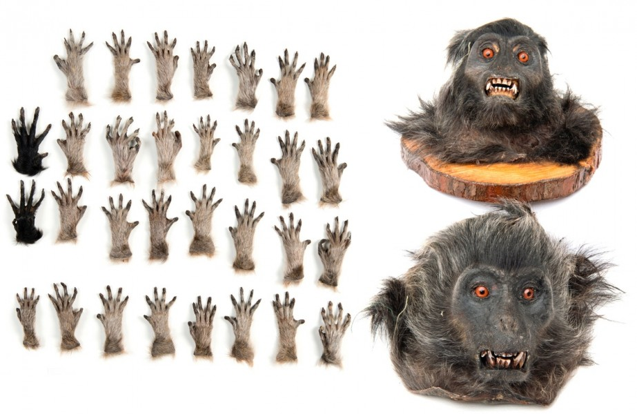 Bush was offering to sell hands and heads of various monkey species protected by law. Photo courtesy of London Metropolitan Police.