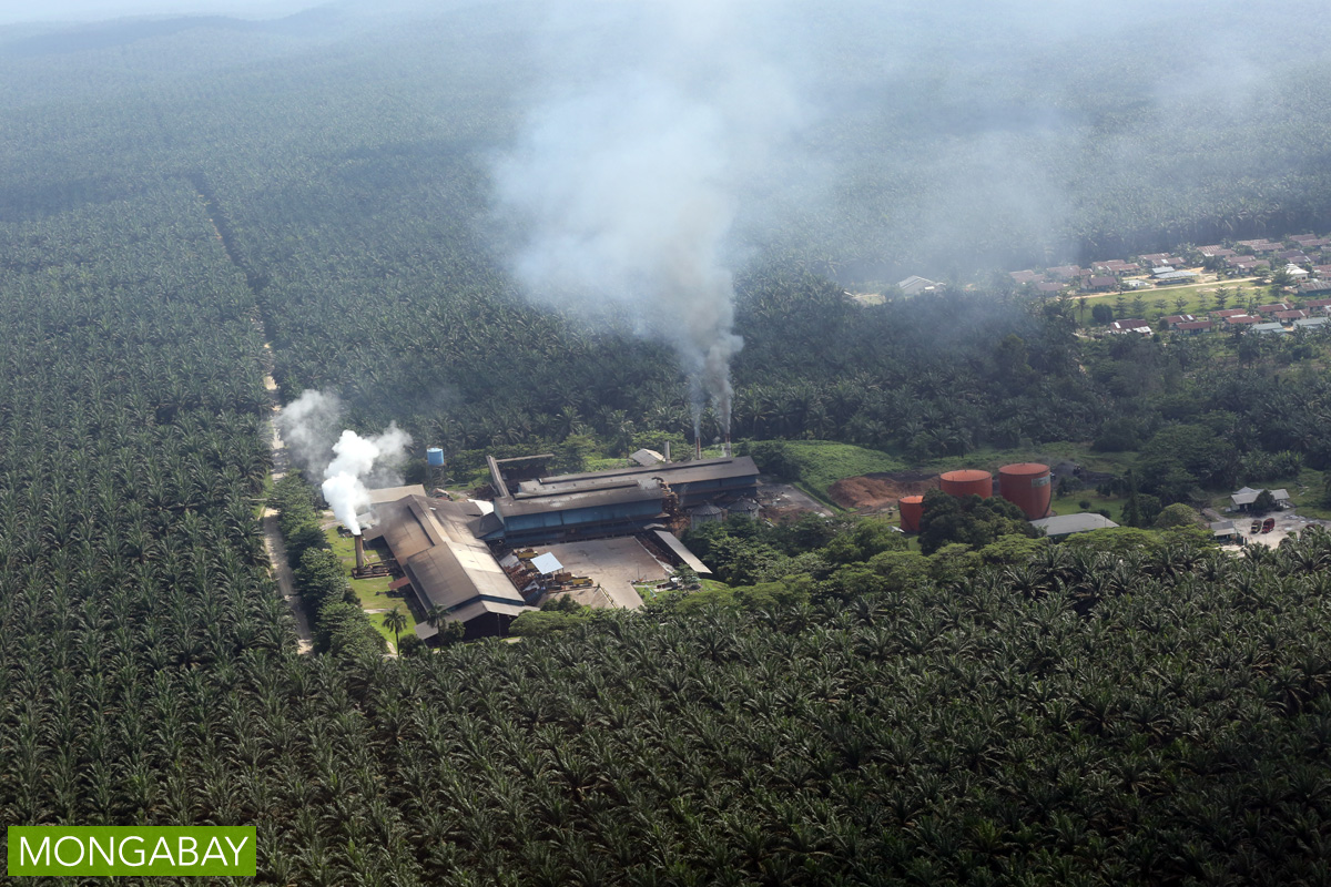 A palm oil mill in Indonesia. Photo by Rhett A. Butler