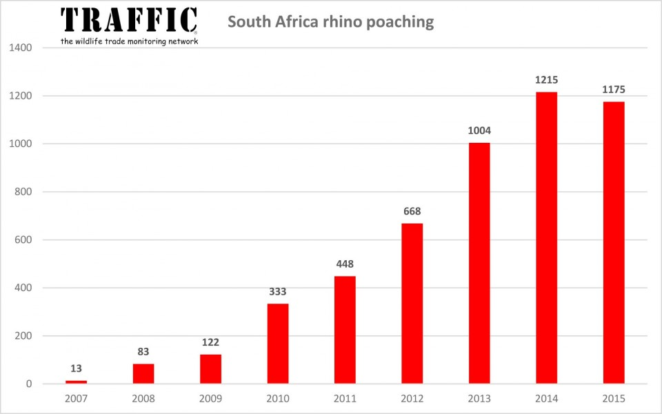 Rhino-poaching-numbers-South-Africa-2007-2015