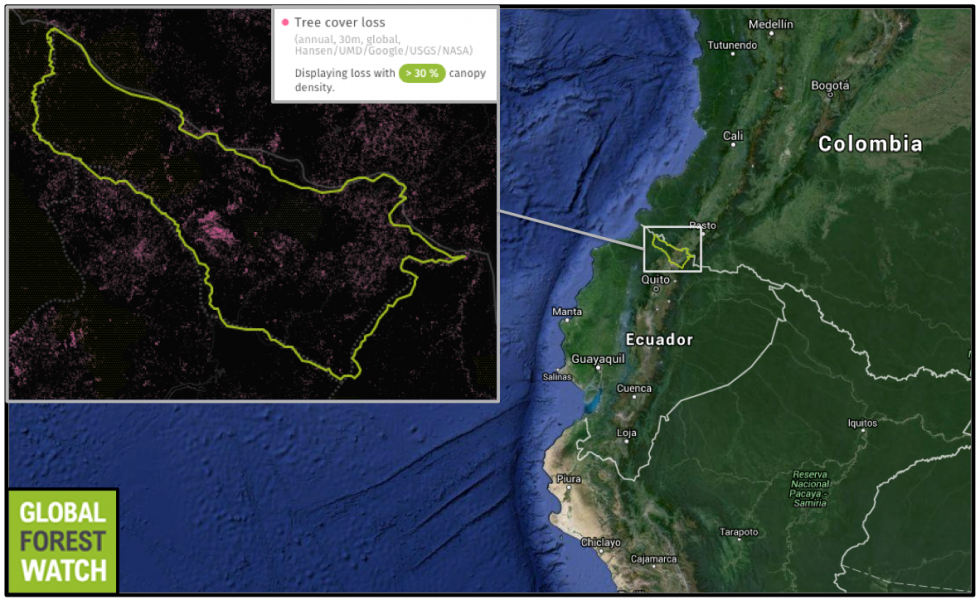 Ecuador's Carchi Province is located along the country's northern border with Colombia. From 2001 through 2014, Carchi lost more than 6,000 hectares of its tree cover.