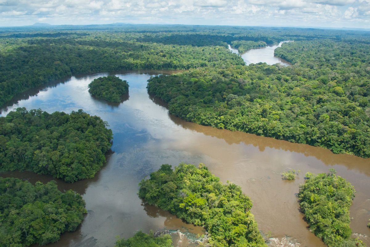 Rainforest river in Suriname. Photo by Russell A. Mittermeier