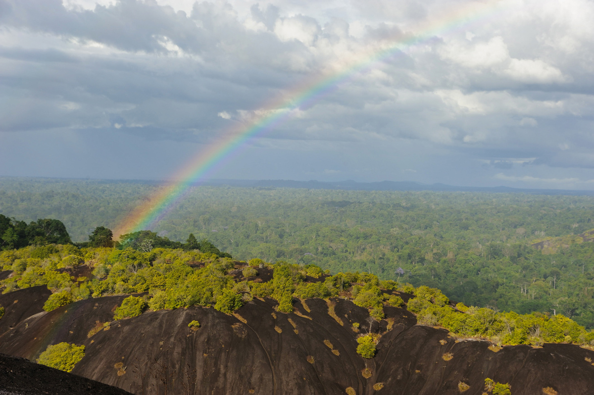 Rainbow over the forest from the Voltzberg, Suriname.  Photo by Russell A. Mittermeier