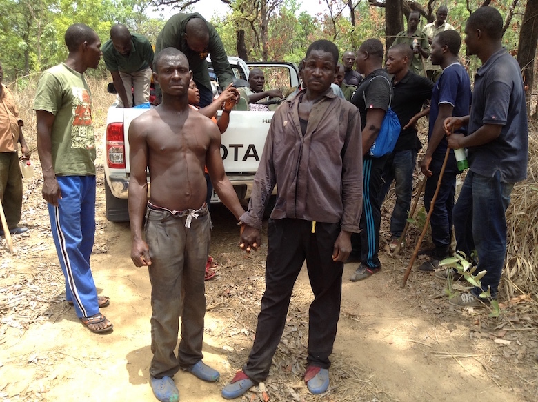 Two locals arrested while poaching inside Gashaka-Gumti National Park. by Lawal Sani Kona.