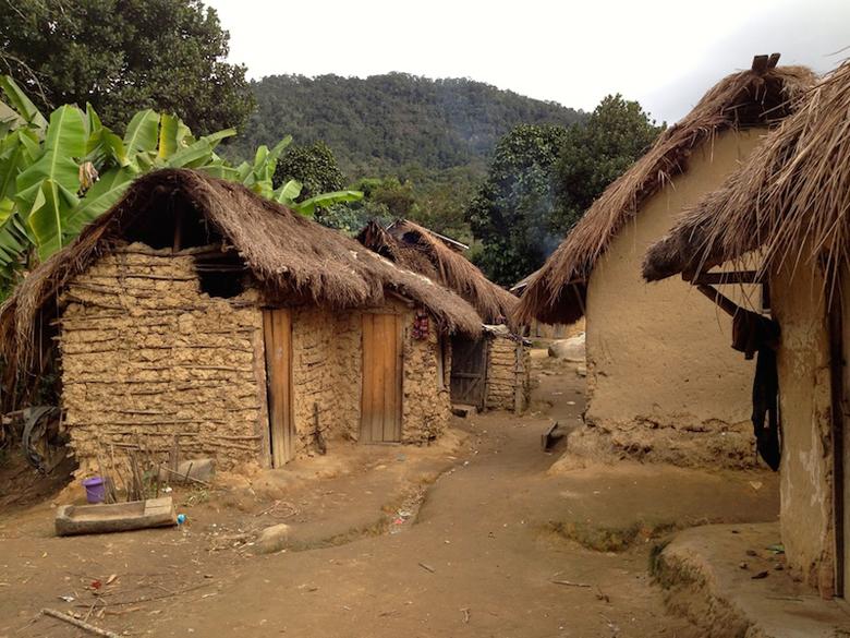 A vanilla farm, Ranomafana. Photo by Diane Powers.