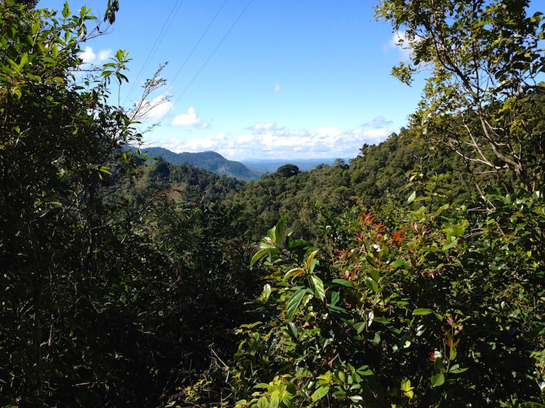A view of Ranomafana, photo by Diane Powers