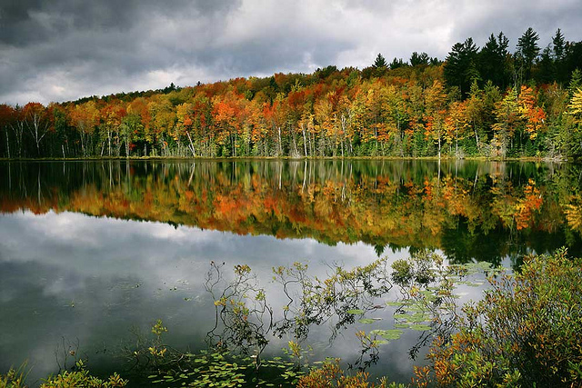 Hiawatha National Forest near Manistique, Michigan, where Recreation Resource Management, a private company, manages campgrounds on federal land. Photo by Recreation Resource Management.