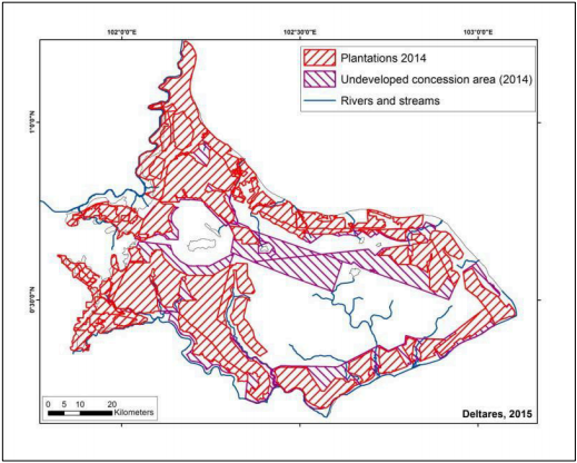 Existing plantation areas (including smallholders) and undeveloped concession areas in 2014. Image courtesy of Deltares