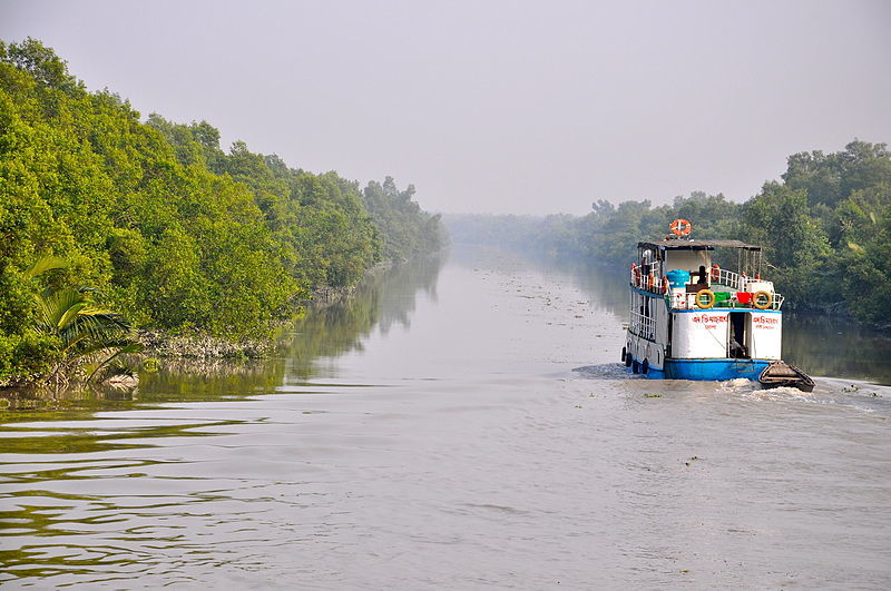 A boat chugs along a river through the Sundarbans. Photo by Fabian Lambeck via Wikimedia Commons (CC 4.0).