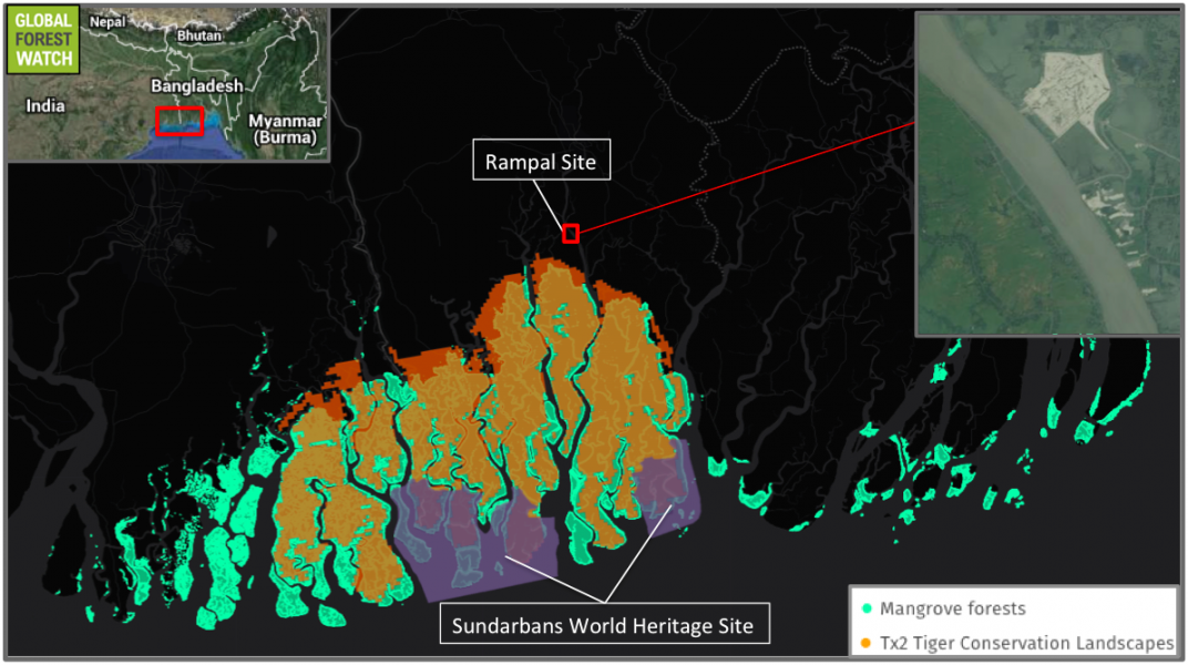 The Sundarbans consists of a large tract of mangrove forest straddling the border between India and Bangladesh. The site for the Rampal power plant sits along the Passur River just upstream from the Sundarbans mangrove. Global Forest Watch shows that the Sundarbans is host to a Tx2 Tiger Conservation Landscape, meaning that it could double the wild Bengal tiger population there through proper conservation and management by 2020. Satellite imagery from early 2016 (upper-right inset) shows development proceeding at the Rampal site.