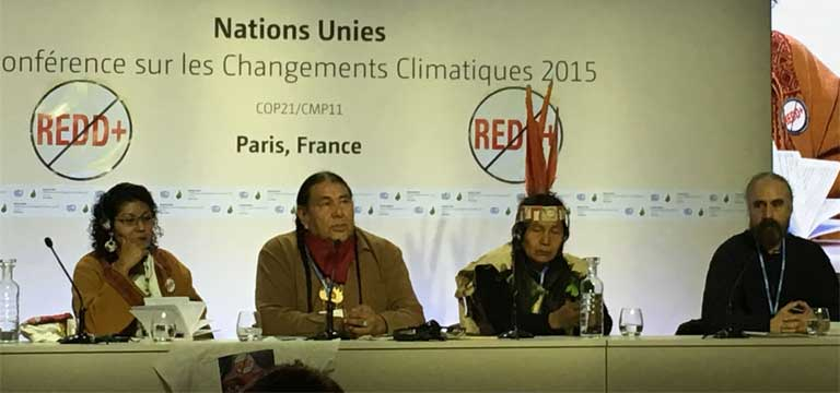 1)Tom Goldtooth, executive director of the Indigenous Environmental Network, speaking against REDD+ alongside other indigenous leaders at COP21. Photo by Roopali Phadke