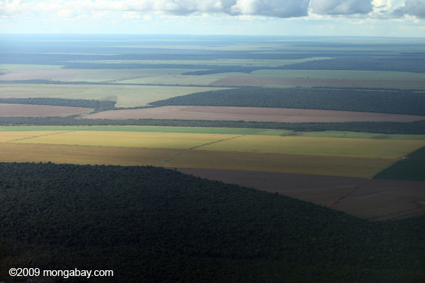 Forest and agricultural land in the Brazilian Amazon in 2009. Photo by Rhett A. Butler