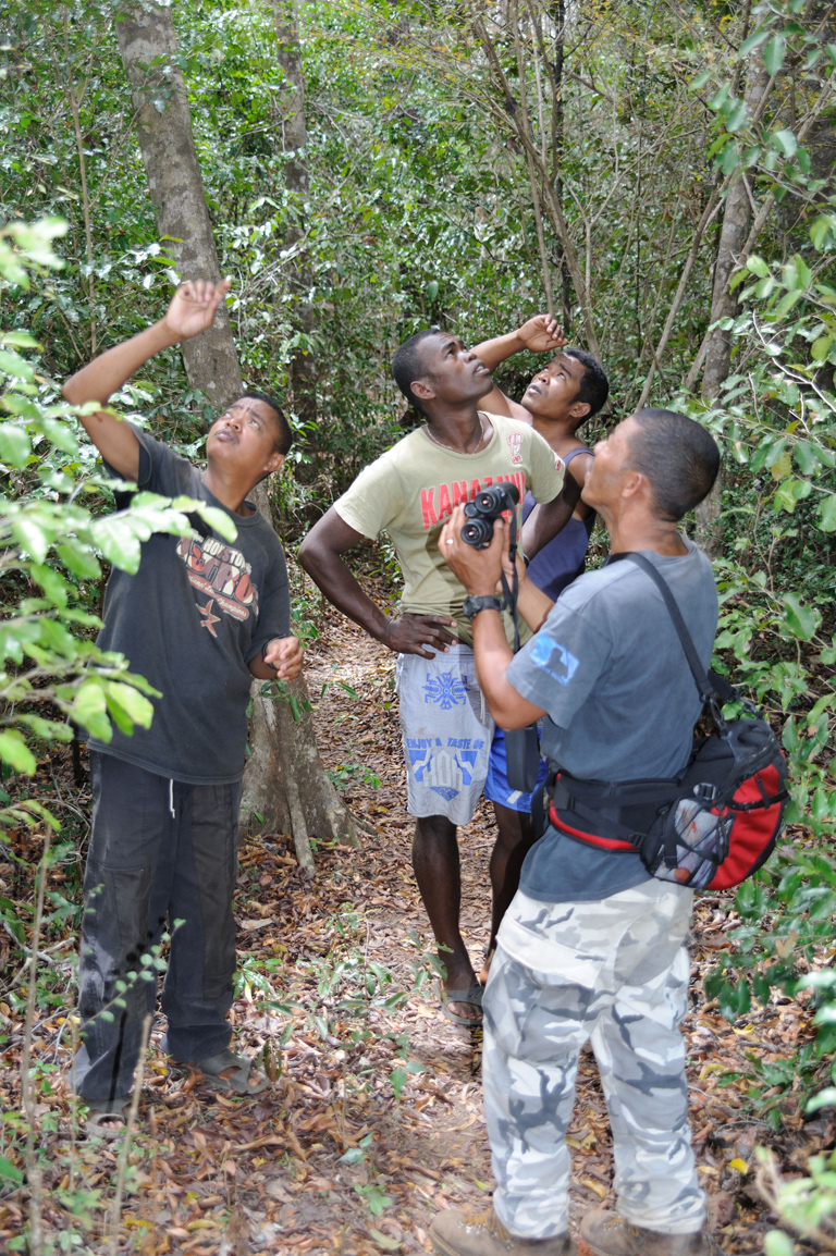 Ed Louis' field crew searching for aye-aye nest. Photos by Russ Mittermeier.