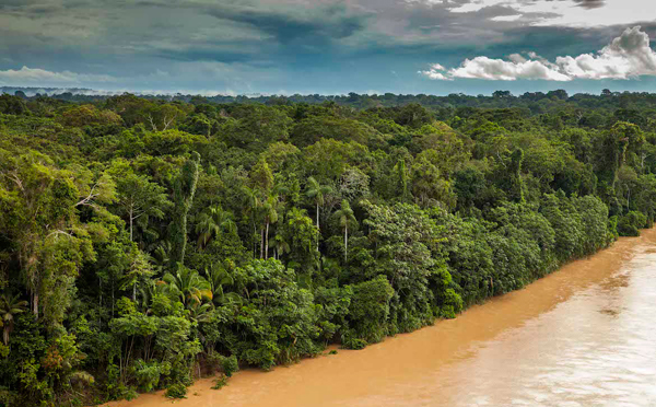 0309.The-Las-Piedras-jungle-from-above.600